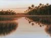 """Ozello Sunrise"" by Hernie Vann"