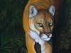 Florida Native by Nancy Lauby
