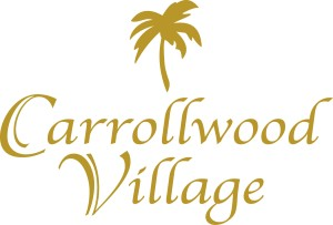 Carrollwood Village