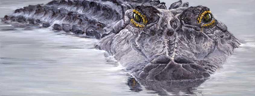 PrioriB--Friend-Gator-by Bibzi Priori