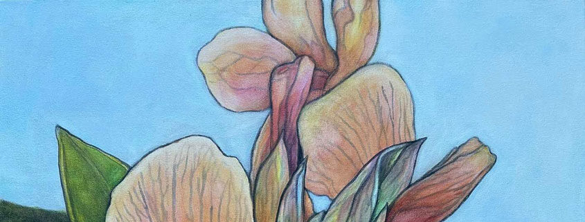 Florida in Art with -Diane-V-Radel---845x321